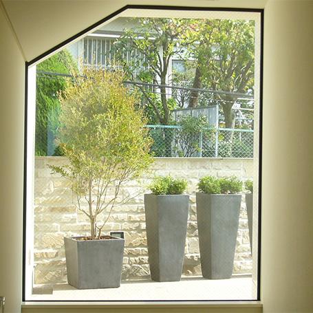 2階まで届くシンボツリーが圧倒的な存在感を放つテラス