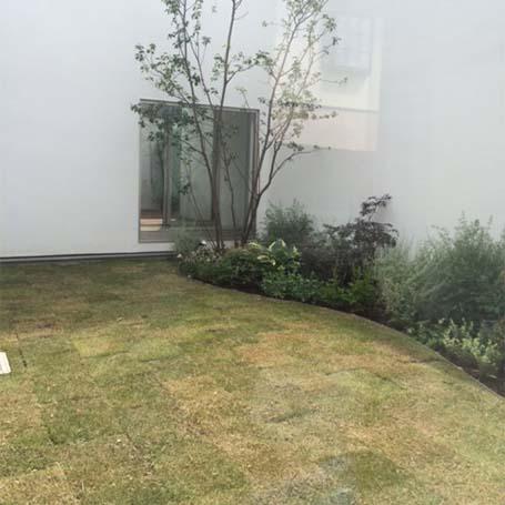 緩やかな曲線が柔らかな印象を与える芝庭
