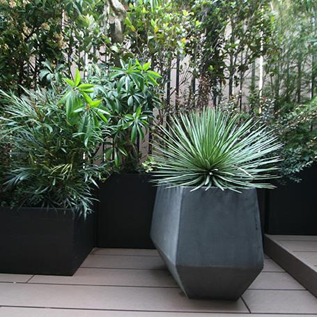 造詣的な植物が織り成すバスルームからの緑豊かな眺め