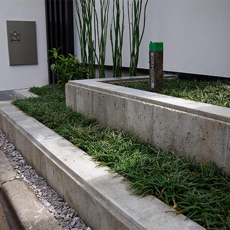 モウソウチクが涼やかかつダイナミックな景観を織り成す中庭