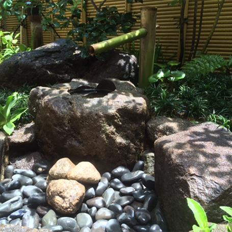 洗練された素材と植栽が映える趣ある空間