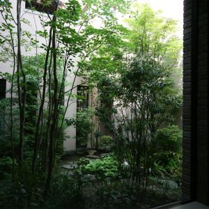 風情豊かな四季の表情を持つ雑木林を再現した中庭テラス